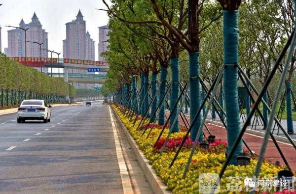 @南京市民:这些道路通车啦!有