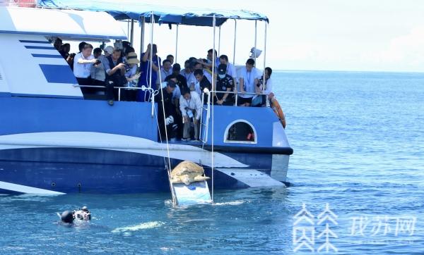 江苏检察赴海南分界洲岛外海放生29只海龟   竟是扫黑除恶牵出的大案