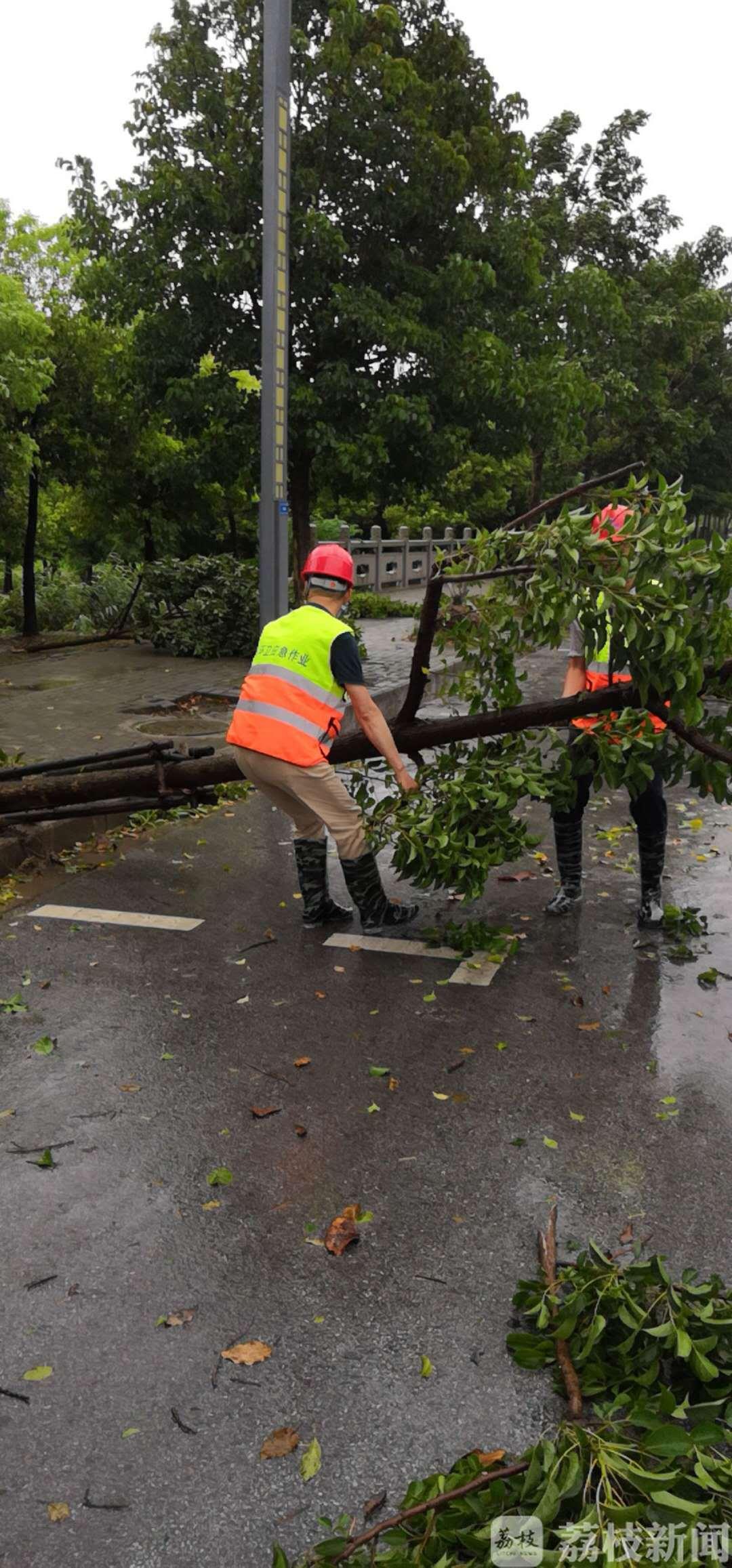 26车断树枝、43处下水道、35处积水点!风雨中,他们在奔跑
