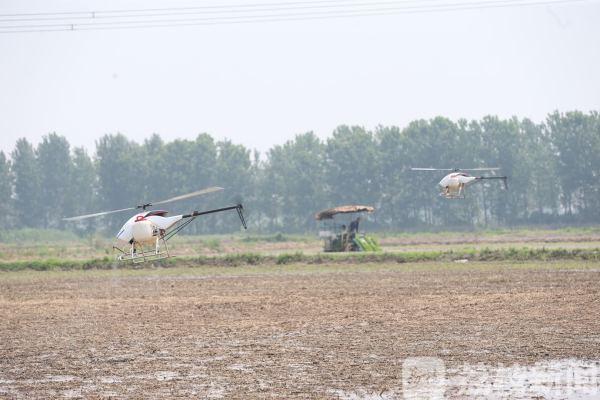 还能全程监测 无人机飞入江苏农田
