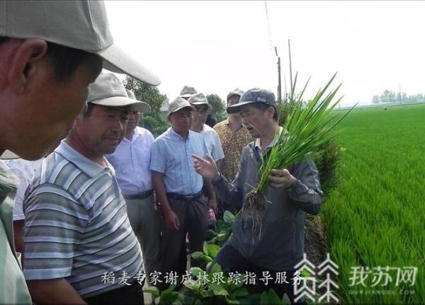 扬州职大教师夫妇原创歌曲致敬驻村干部,女儿演唱很动情