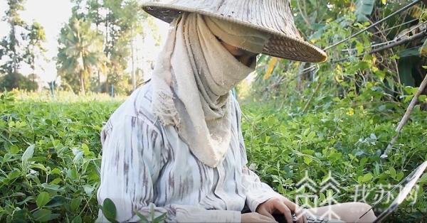 刘昌国扬州职大教师夫妇原创歌曲致敬驻村干部,女儿演唱很动情